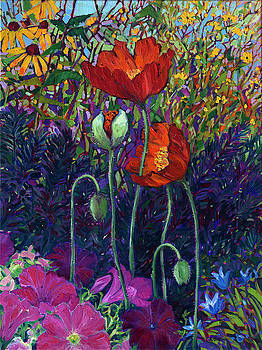 Poppies and Petunias by Rebecca Baldwin