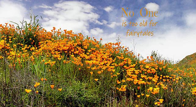 Poppy Fairy Tale by Norma Brandsberg