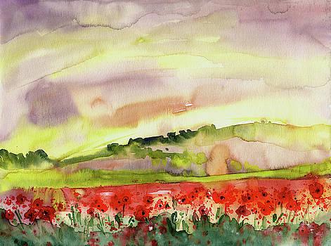Poppy Field In Spain by Miki De Goodaboom