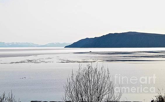 Port Baikal by Inessa Williams