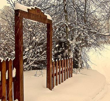 Portal by Elizabeth Tillar