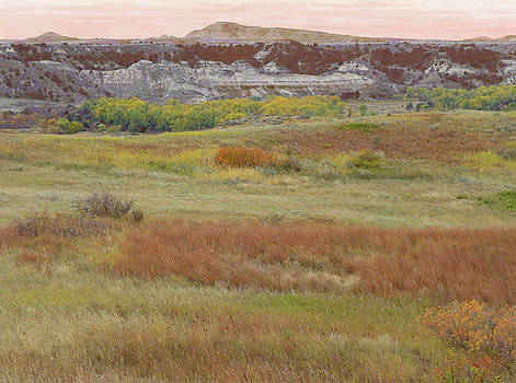 Prairie Reverie on the Western Edge by Cris Fulton