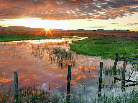 Prairie Sunrise by Leland D Howard