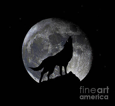 Ricardos Creations - Pre Blood Red Wolf Supermoon Eclipse 873o