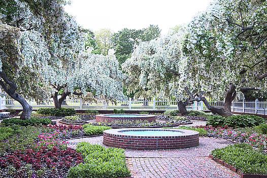 Prescott Park Spring Bloom by Eric Gendron