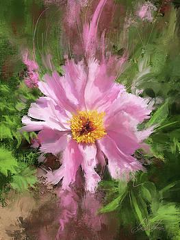 Pretty in Pink by Garth Glazier