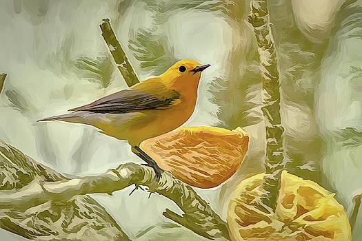 Prothonotary Warbler Photo Art by Debra Martz