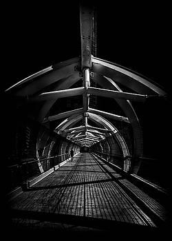 Puente de Luz Pedestrian Bridge Toronto Canada No 1 by Brian Carson