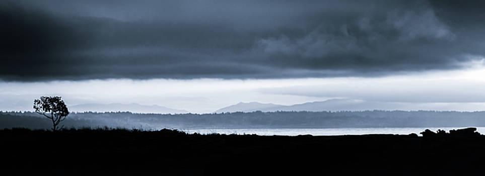 Puget Sound Serenity by Don Schwartz