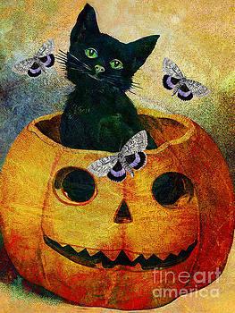 Pumpkin Treat  by Tammera Malicki-Wong