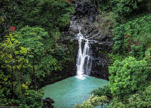 Puohokamoa Falls by Gaylon Yancy