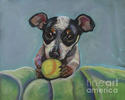 Puppy with Tennis ball by Ann Hoff
