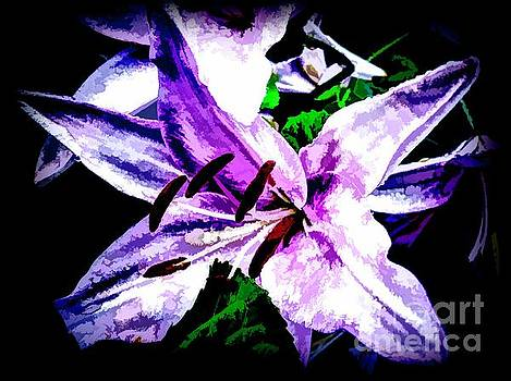 Purple Lily On Black Background by Debra Lynch