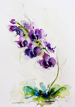 Purple Orchid by Rowena Delfter