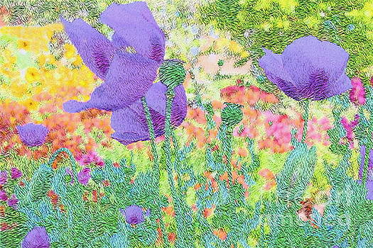 Purple Poppies by Katherine Erickson