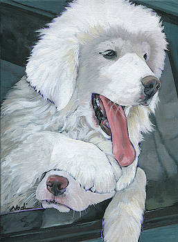 Pyr Puppies by Nadi Spencer