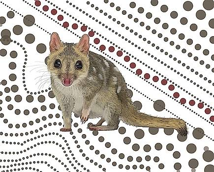 Q is for Quoll by Joan Stratton