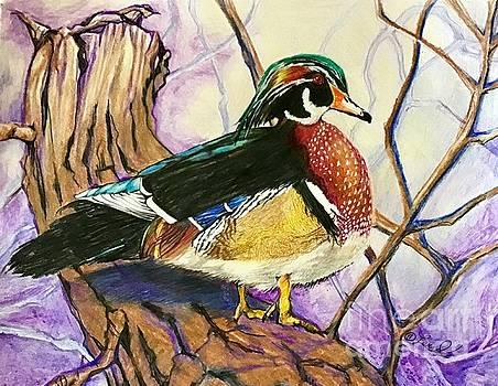 Quack by Laurel Adams