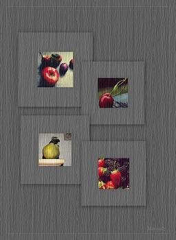 Quattro stagioni by Marija Djedovic