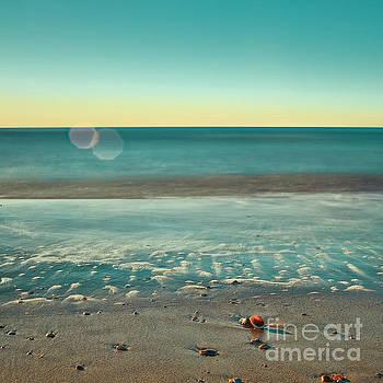 Quiet Beach by Patrick M Lynch