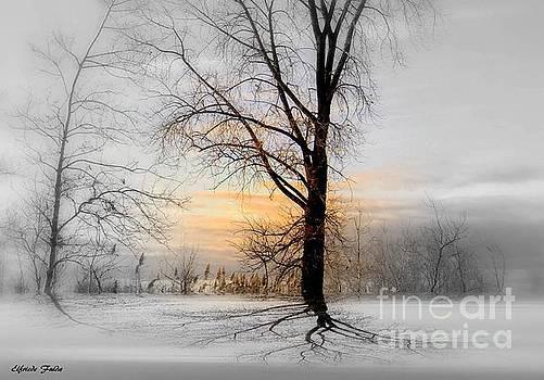 Quietude by Elfriede Fulda