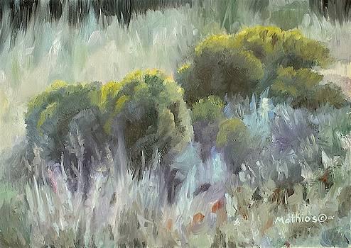 Rabbit Brush Study by Peter Mathios