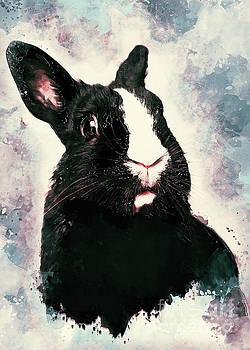 Rabbit Bunny art by Justyna JBJart
