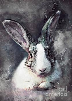 Rabbit  by Justyna JBJart