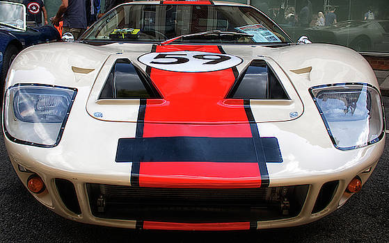 Racing Stripes by Martin Newman