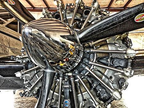 Radial by Tom Gresham