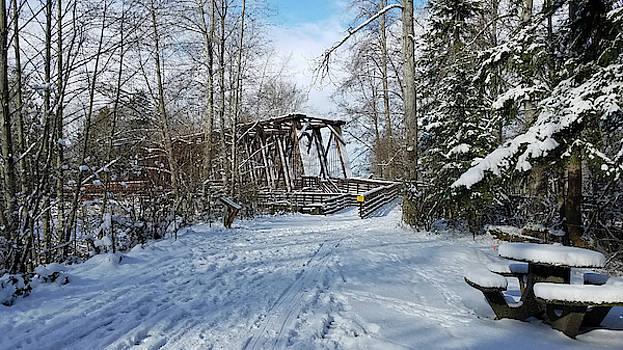Railroad Bridge Park in Snow by Marie Jamieson