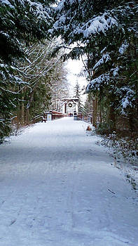 Railroad Bridge Through the Trees by Marie Jamieson