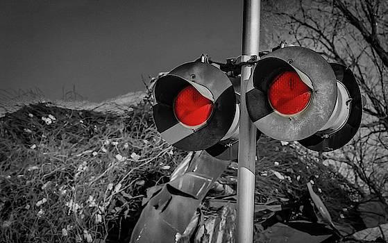 Railroad Crossing by Ray Congrove