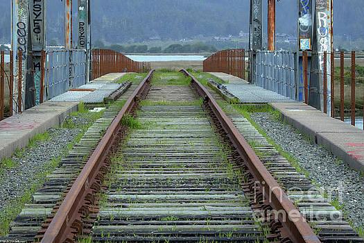 Railroad Lines by Mitch Shindelbower