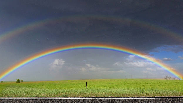 Rainbow and the Open Road by Ally White