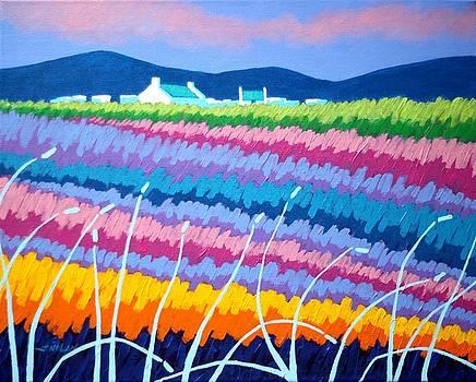 Rainbow Meadow II by John  Nolan
