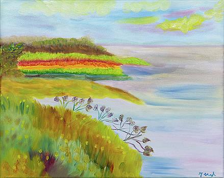 Rainbow Oceans by Meryl Goudey