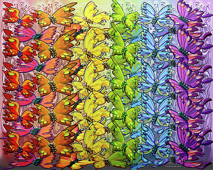 Rainbow of Butterflies by Kevin Middleton