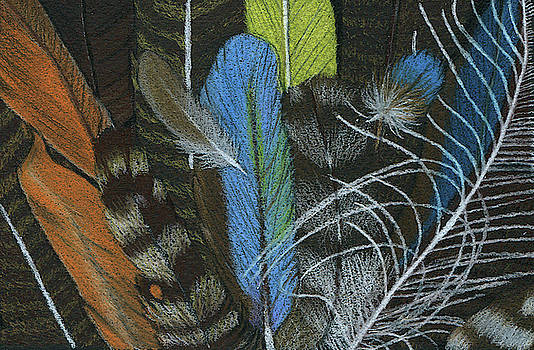 Rainbow of Feathers by Lisa Blake