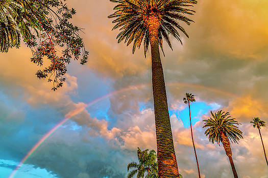 Rainbow Over The Palms by Gene Parks