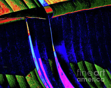 Neon Palm Detail by Jimm Roberts