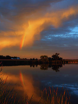 Rainbow Reflections by Melissa Peterson