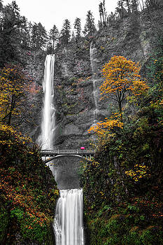 Rainy Day At Multnomah Falls by Wes and Dotty Weber