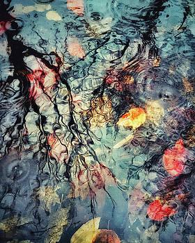 Rainy Day Blues i by Illumina Photographics