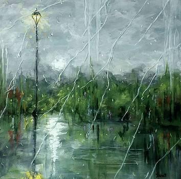 Rainy Day View  by Danett Britt