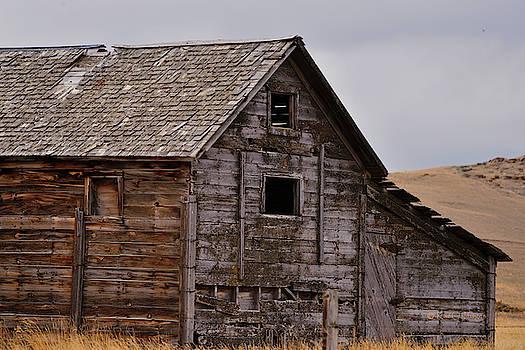 Ranch Building in Disrepair by Kae Cheatham