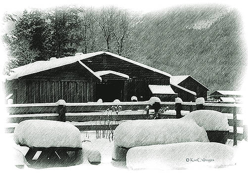 Kae Cheatham - Ranch Buildings and Benches in Snow