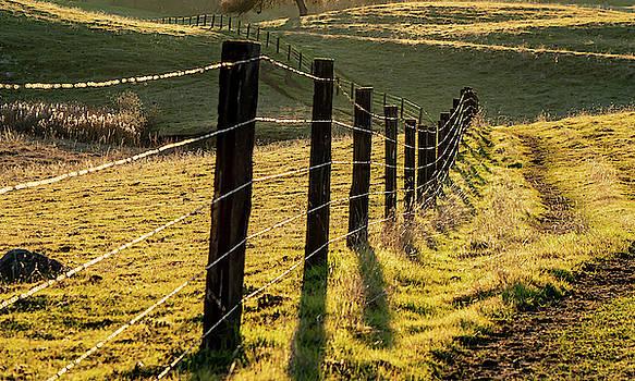 Ranch Morning by Dave Prendergast