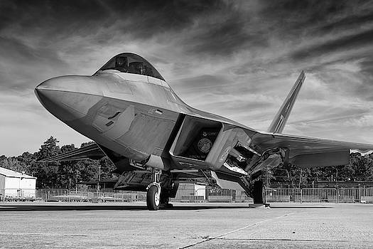 Raptor Front Quarter View by Chris Buff