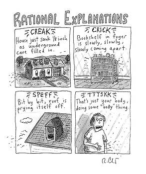 Rational Explanations by Roz Chast